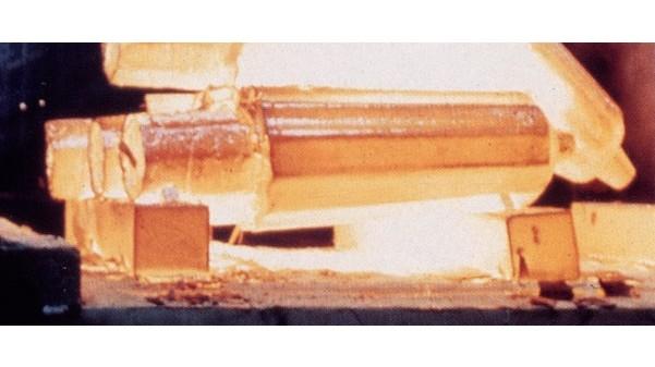 Nickel Forgings